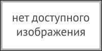 sbnv_1